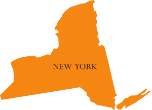 New York Surrogacy