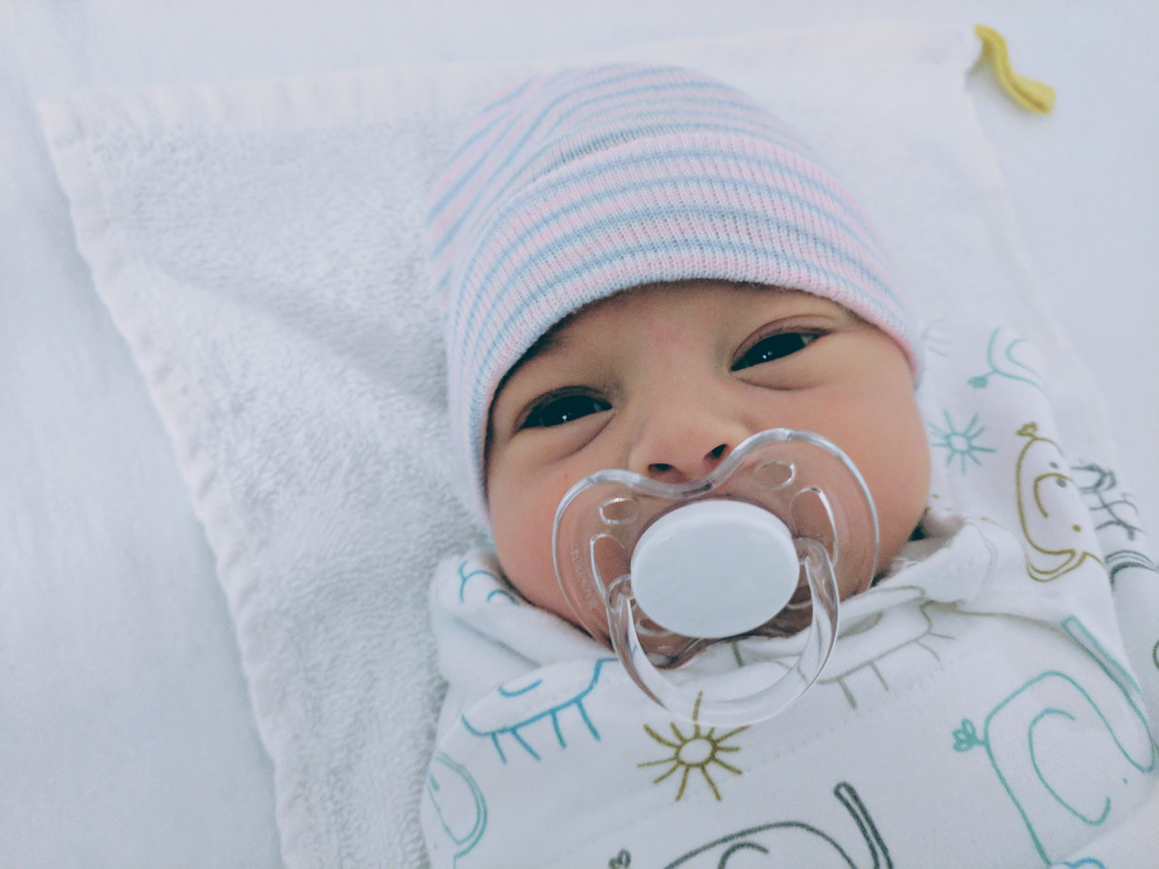 93e5839f6 Join us in welcoming the adorable Baby Astrid into the world. Her parents  and the amazing surrogate, who made this bundle of joy possible, are all  doing ...